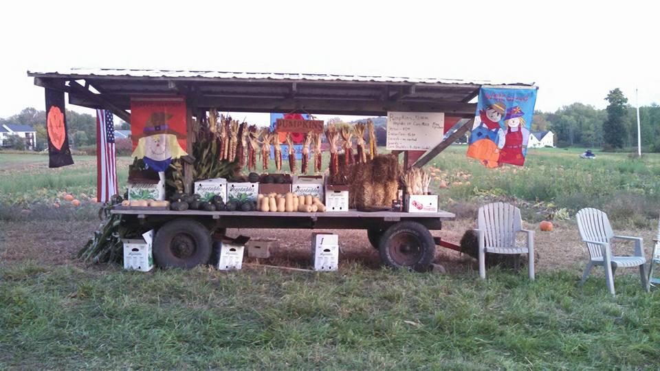 Katie's Pumpkin Patch decorates a wagon with all of their produce and seasonal decor.