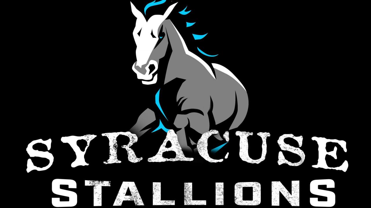 Stallions logo