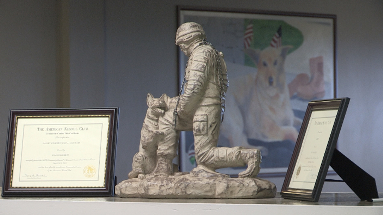 Statue of dog and soldier