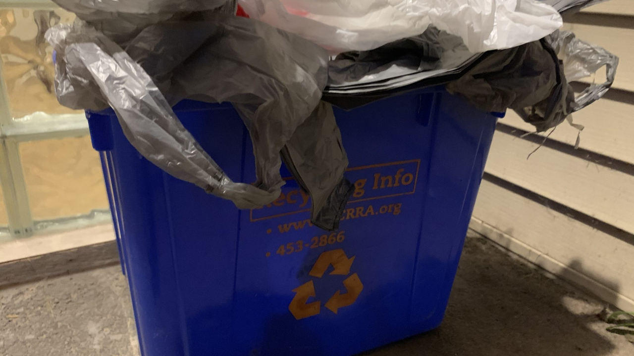 Plastic grocery bags in a recycle bin