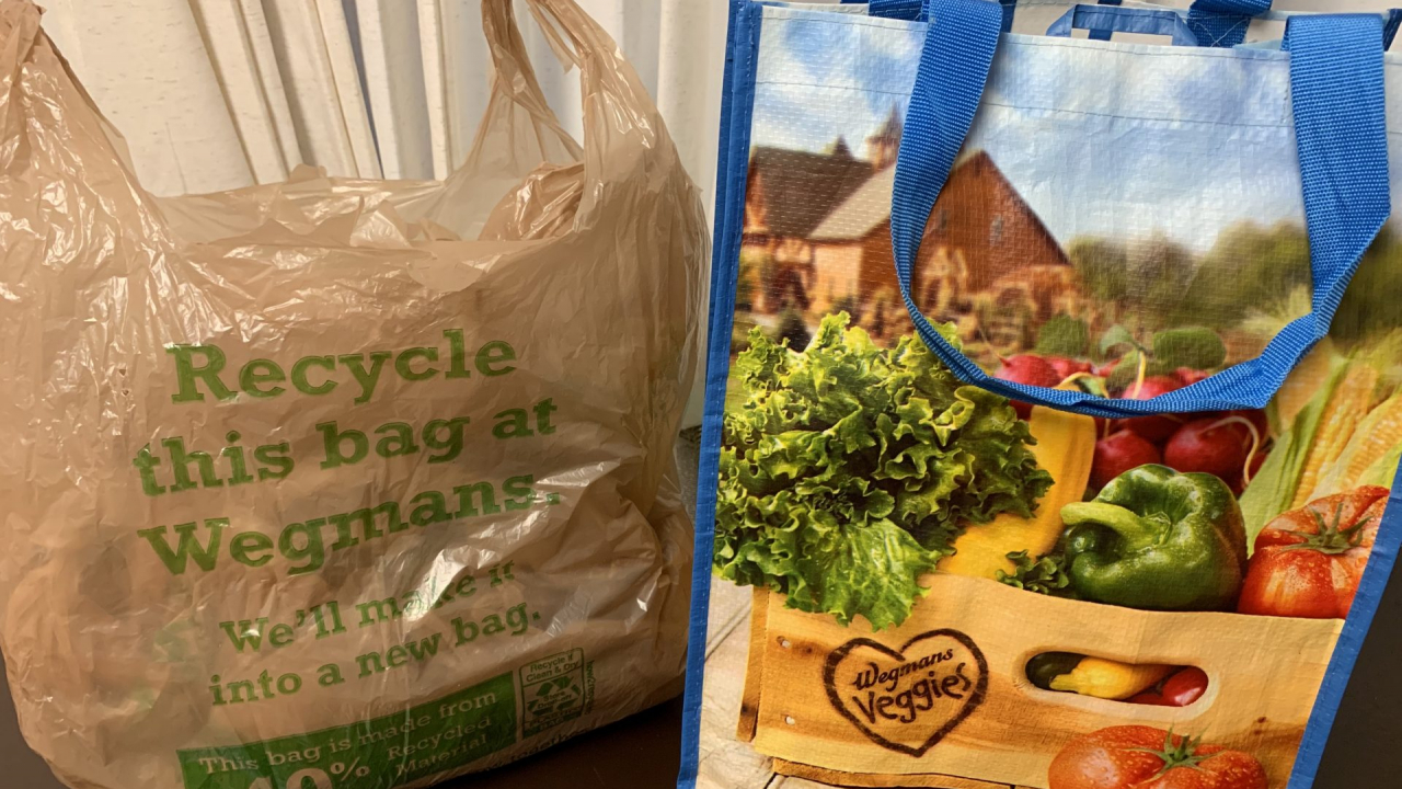 A Wegmans plastic bag next to a reusable bag.