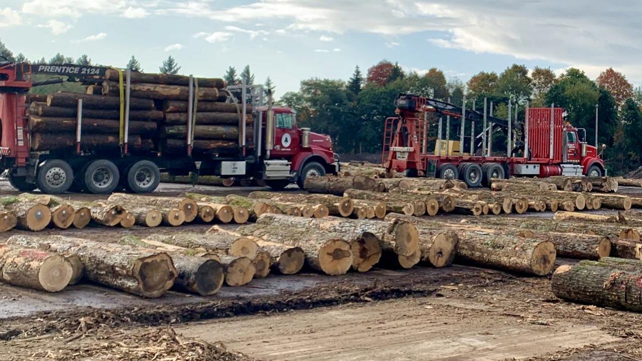 Gutchess Lumber Co.