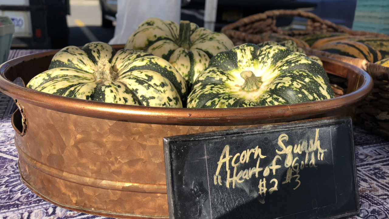 Acorn squashes sit in a basket.