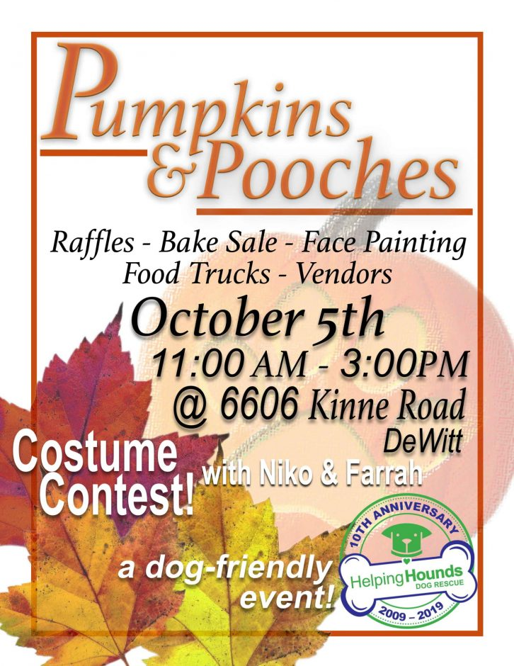 A flyer with the time and date of the Pumpkins & Pooches event at the current Helping Hounds location.