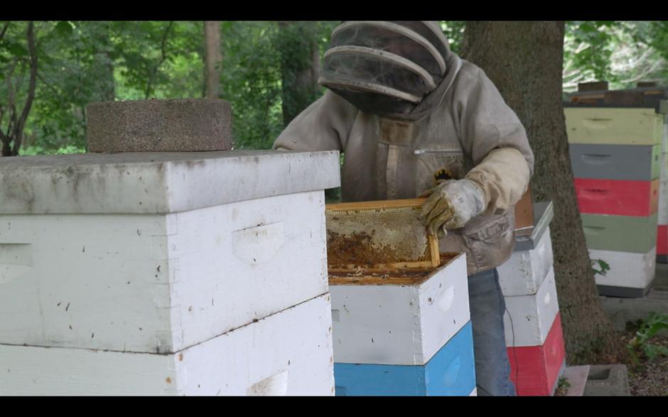 Man in beehive suit