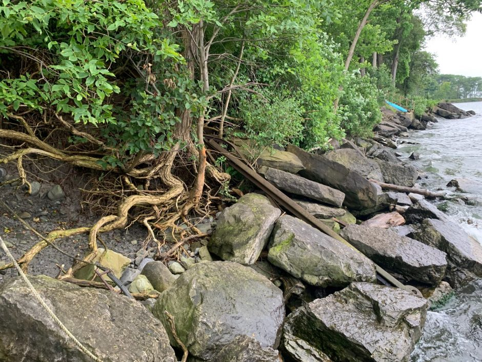A closer look at debris washed up on the shoreline and exposed roots caused by high water levels