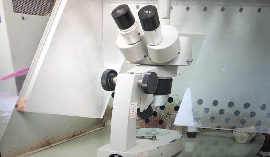 A microscope at Envirologic